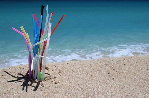straws in the ocean