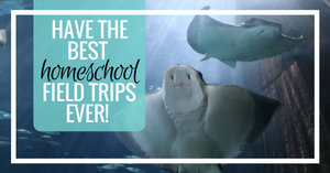 How to Have the BEST Field Trips Ever!