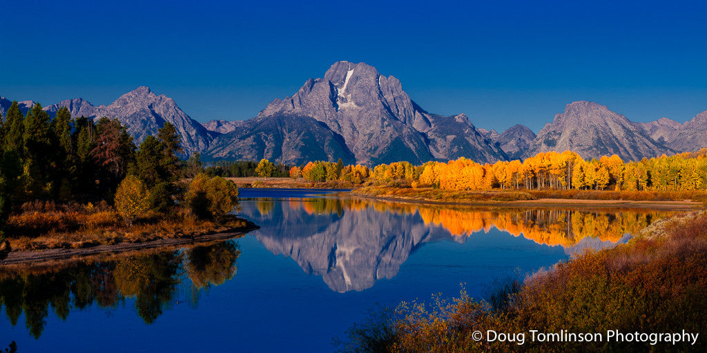 Fall on Oxbow Bend - 1330