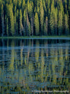 Piney Lake Reflection - 1547