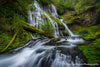Spring at Panther Creek Falls - 1520