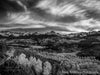 Sunset on the San Juan Mountains B&W - 1551