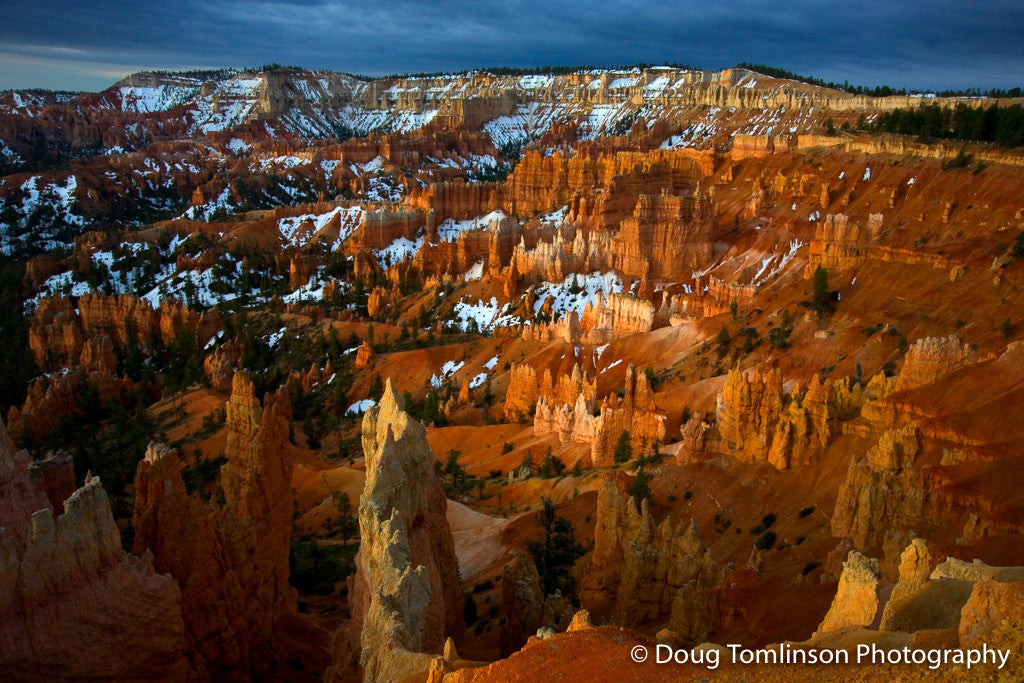 Winter in Bryce - 1260