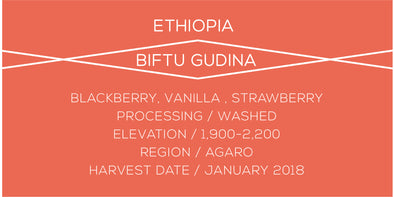 Ethiopia Biftu Gudina - Case Coffee Roasters