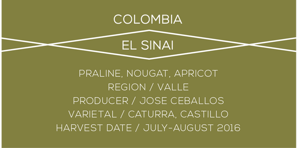 Colombia El Sinai Case Coffee
