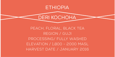 Ethiopia Deri - Case Coffee Roasters