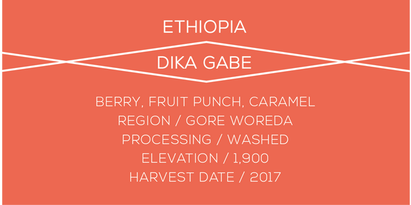 Ethiopia Dika Gabe - Case Coffee Roasters
