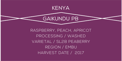 Kenya Gaikundu Peaberry - Case Coffee Roasters