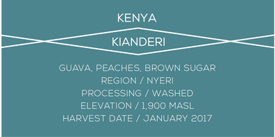 Kenya, Kianderi, Case Coffee