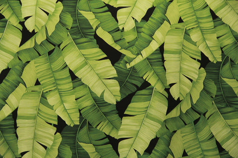 Banana Leaf  Upholstery BarkCloth Fabric