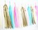 Gender Reveal Tassel Garland Kit