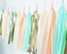 Mint & Peach Tassel Garland Kit