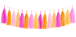 Pink Grapefruit Tassel Garland Kit