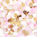 Natural Blush Confetti Mix