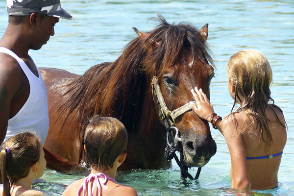Tourists petting a horse at Grand Case beach