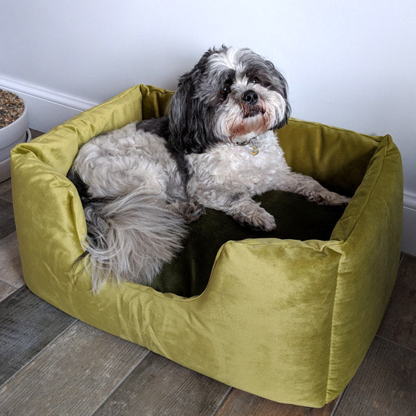 Charley Chau Velour dog bed