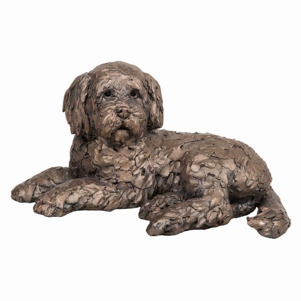 Bronze Ozzy Cockapoo Lying