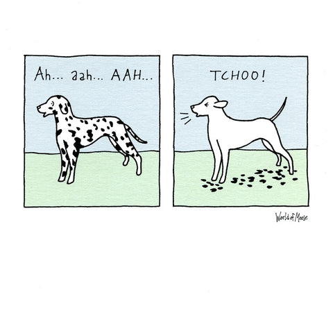 Dalmation Dog - Aah Tchoo Greeting Card