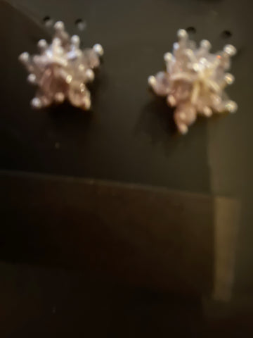 Silver plate earrings with a beautiful star effect and stud fastening
