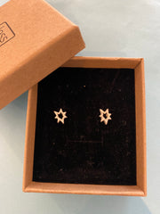 Earrings - Brushed Silver Star Stud