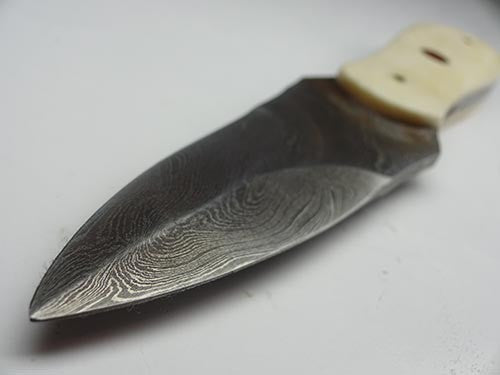 Royal Oyster Knife Damascus & Camelbone