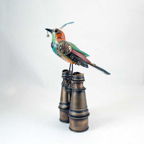 Multi-Colored Fancy Bird on Binoculars