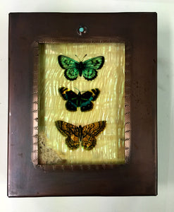 Three Butterflies Reliquary Box