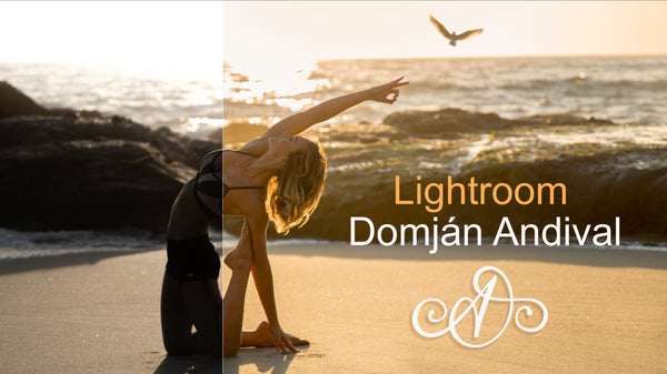 Lightroom Domján Andival