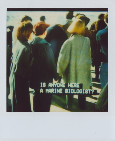 Mary Swope Polaroid (2012_13)