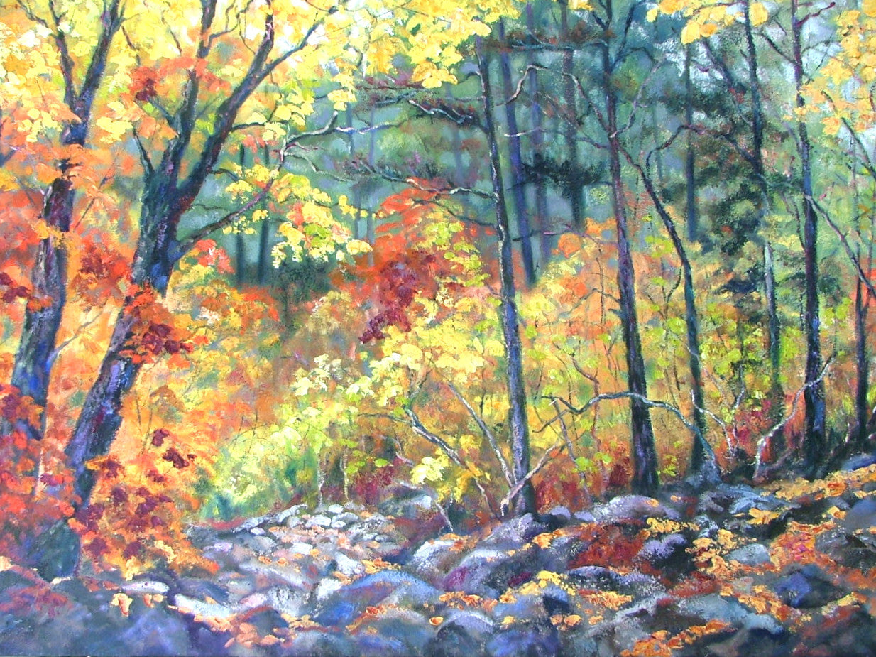 Colors of Fall - 48 x 48   1600.SOLD