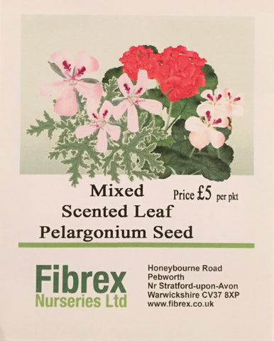 Mixed Scented Pelargonium Seed