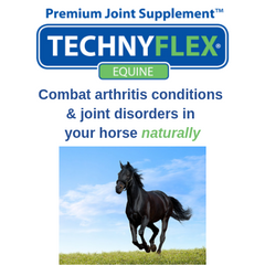 Technyflex Natural Treatment For Equine Joint Disase