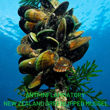 Anti-inflammatory New Zealand Greenlipped Mussel