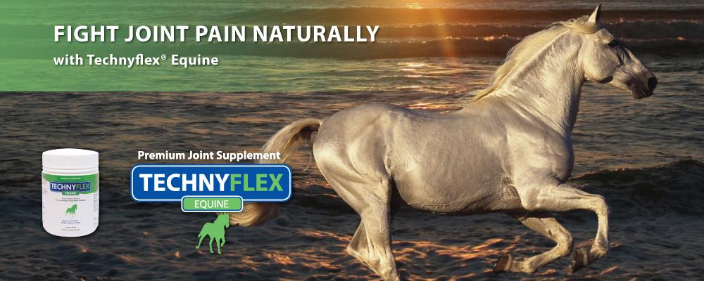 Technyflex Joint Supplement for Horses