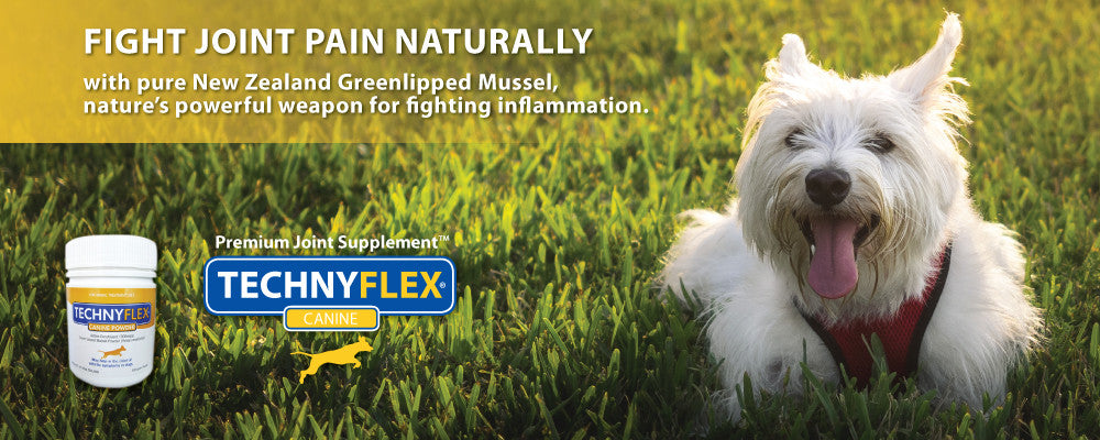 Technyflex Joint Pain For Cats