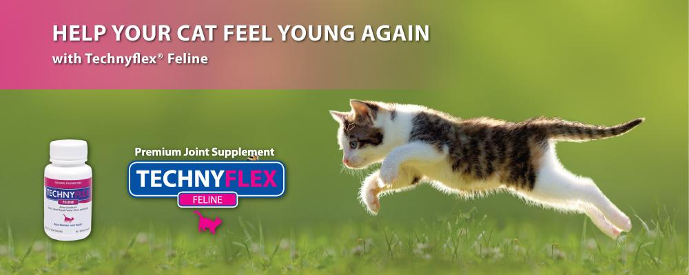 Technyflex Joint Supplements for Cats