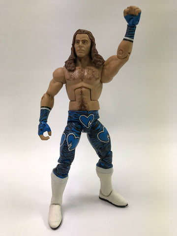 Mattel WWE WCW WWF NWA TNA NXT Elite Toys R Us TRU Network Spotlight The Heartbreak Kid Shawn Michaels HBK