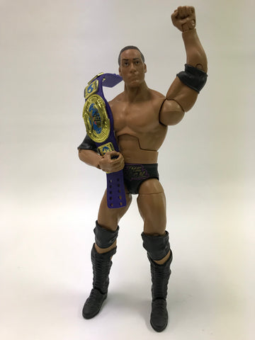 Mattel WWE WCW WWF NWA TNA Elite Nation of Domination Two Pack The Rock With Intercontinental Championship (Blue Version)