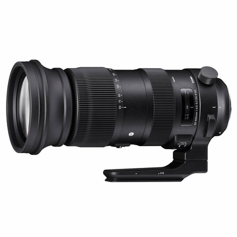 60-600mm f/4.5-6.3 Sports Canon