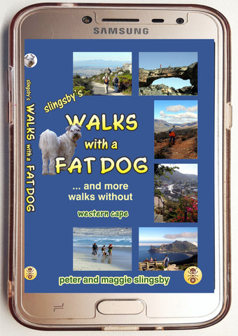 DBA03 Digital Walks with a Fat Dog