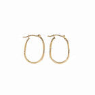 Hoop Diamond Cut Earrings - Oblong in Brushed 14K Yellow Gold
