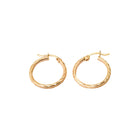 Hinged Hoop Diamond Cut Earrings in 14K Yellow Gold