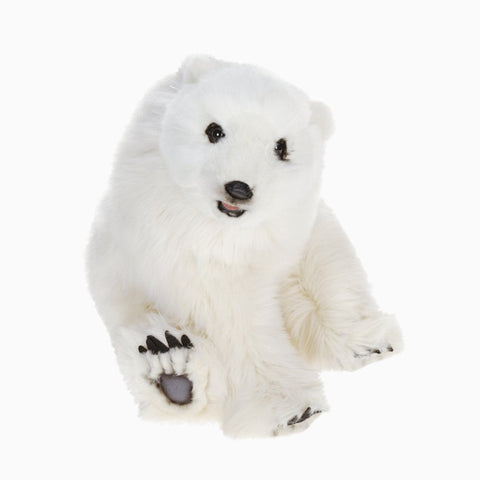 seated polar bear cub