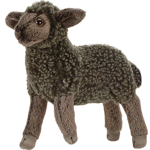 little black lamb