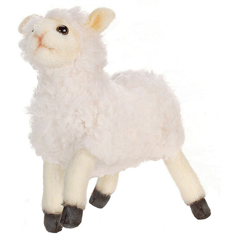 white little lamb