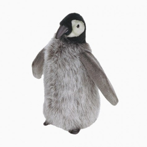 medium penguin chick