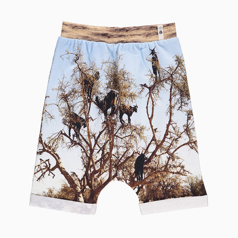 baggy shorts (goat tree)