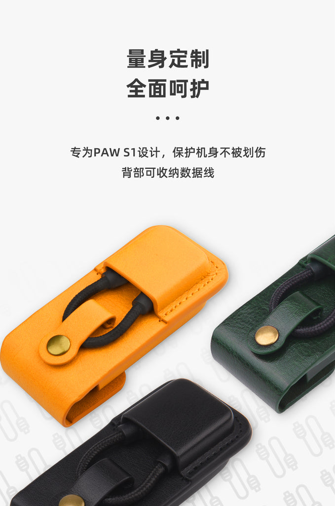 Lotoo PAW S1 Leather Case - MusicTeck