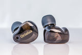 Oriolus Finschi In Ear Monitor