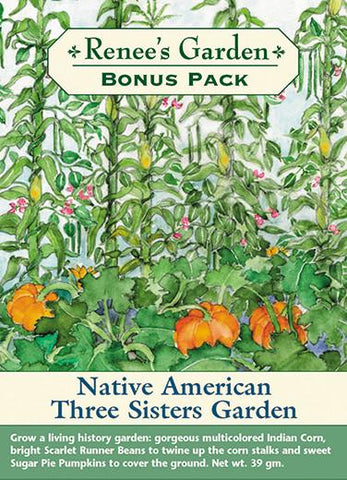 Gardening:  Native American Three Sisters Garden